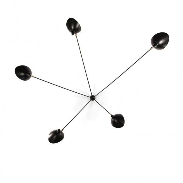Spider Wall Light with 5 fixed arms