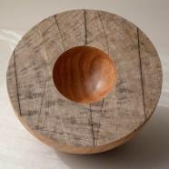 Oak greenish hemisphere