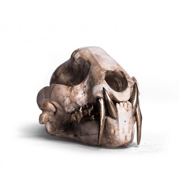 Bone & Matte Brass Leopard Skull