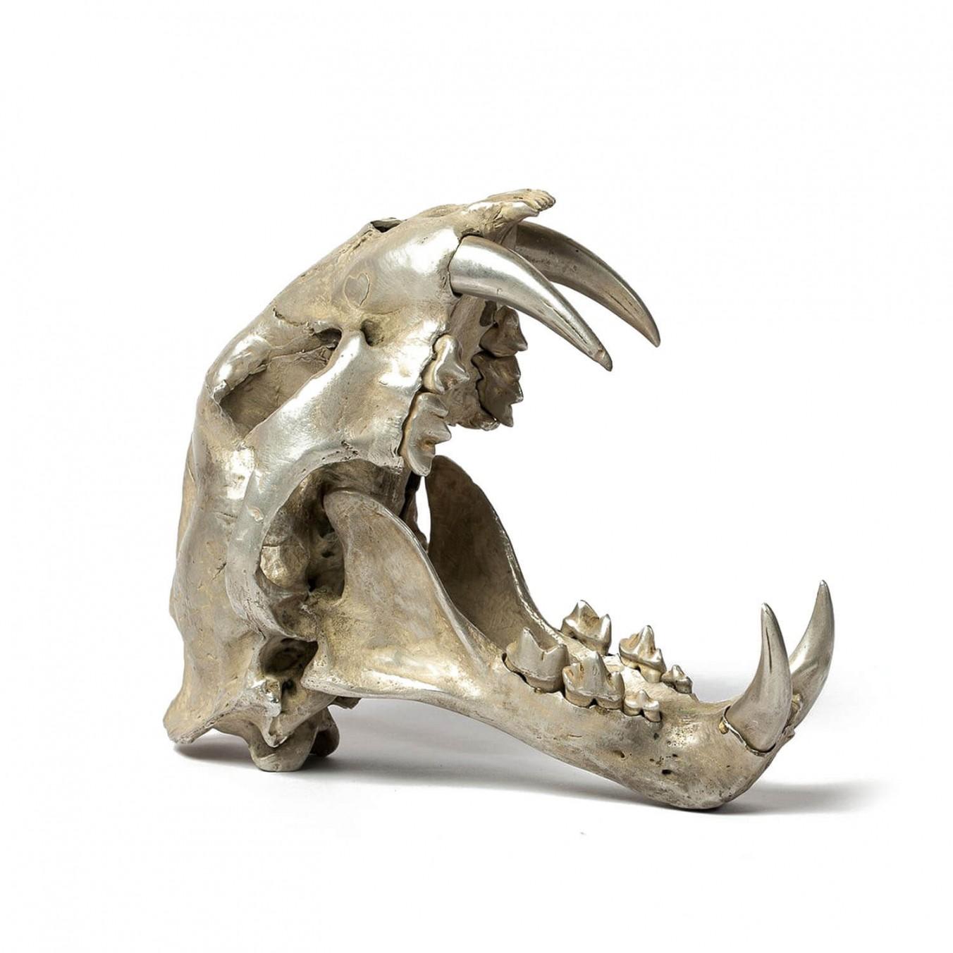 Acid Silver Leopard Skull - Var Held Aggression