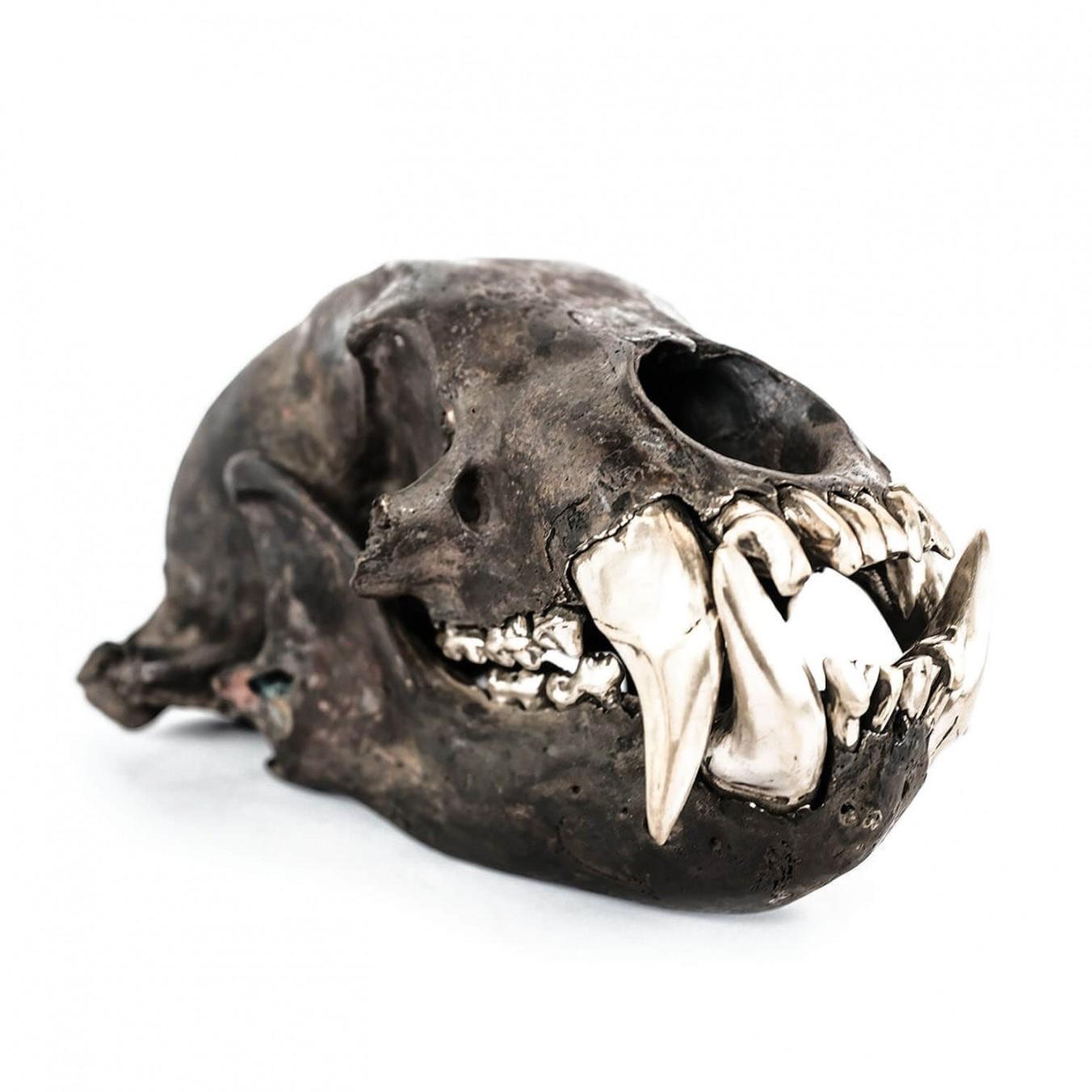 Dirty & Matte Brass Bear Skull