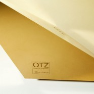 QTZ Lounge and ottoman