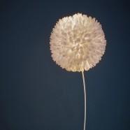 Pluma Cubic Tosa Albina