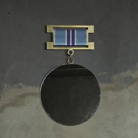 Medallion 6