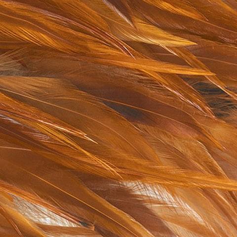 Rust-orange