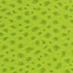 G01 acid green