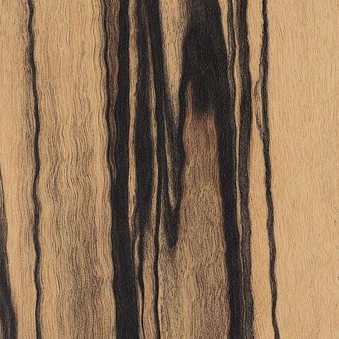 EBL.237.005 white ebony smooth matt